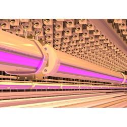 Завершилась разработка нового междурядного светильника «ЭМИС-СВЕТ» СТМ150